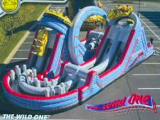 Colossal Rollercoaster Inflatable