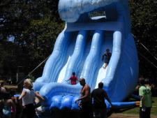 Wild Wave Splash Slide Inflatable