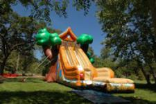 Treehouse Slide Inflatable